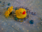 Rubber Duckie with Yellow Daisy and Blue Glass Bead Bubbles for Baby Shower Bingo
